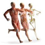 Ostéopathie & Sport : objectifs et bienfaits
