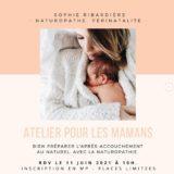 Sophie_Ribardiere_Naturopathe_sur_Instagram-__🌿_Un_Atelier_pour_gerer_l_apres-accouchement_au_post-partum